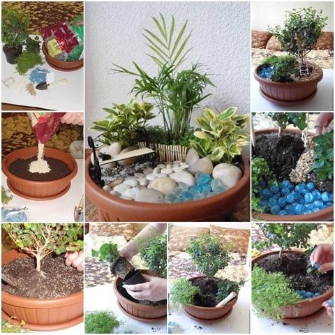 il mio piccolo giardino segreto... - Piccolo Giardino In Casa