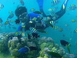 pulau harapan, 6-7 juni 2015 samsung gopro be 17