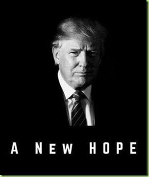 927233c5c36cdd0c0fc4f0af26a3bd0c--pro-trump-trump-wins hope