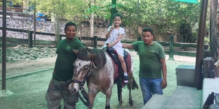 pony_Ride_selangor