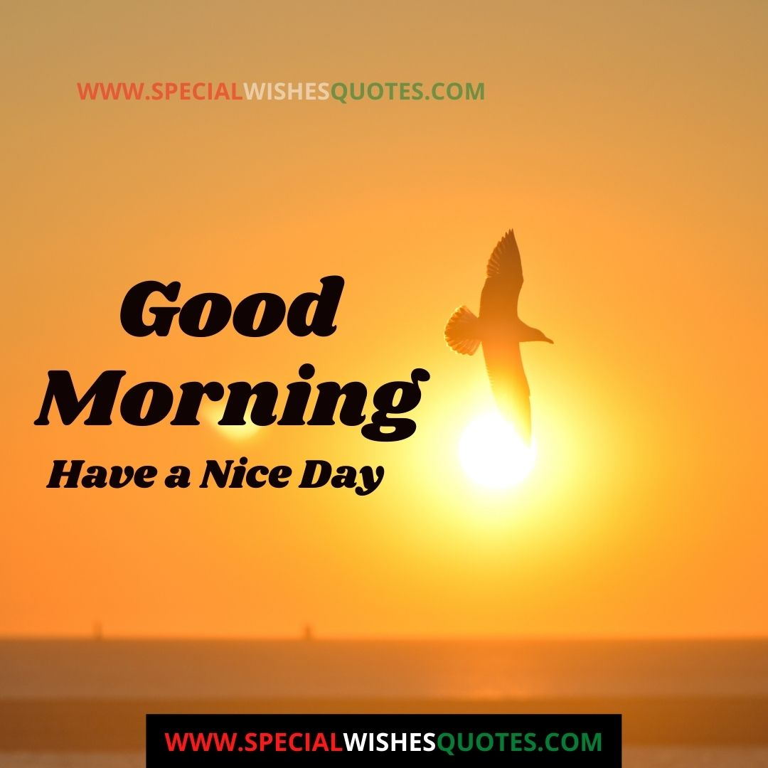 good morning and have a nice day images
