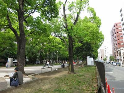 横浜大通公園