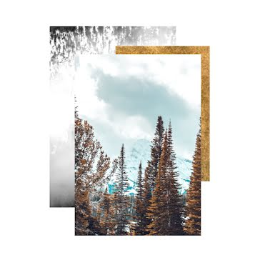 Winter Forest - Instagram Post Template