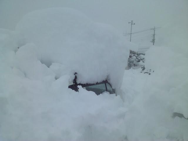 2014年 大雪 山梨
