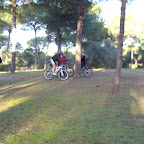 018.12.2011 pinares 005.jpg
