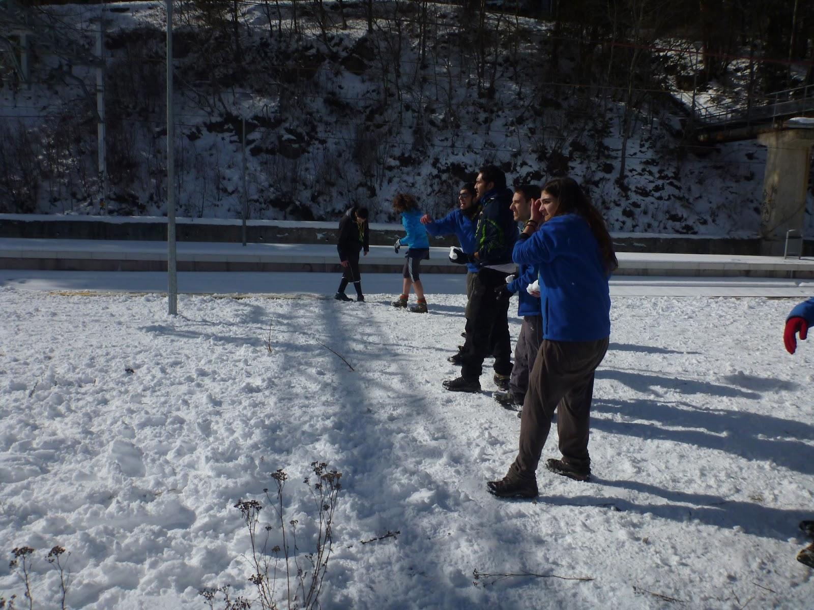 Excursió a la Neu - Molina 2013 - P1050600.JPG