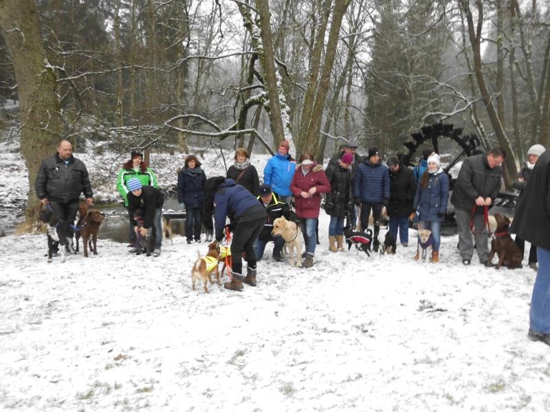 01. Januar 2016: Neujahrswanderung ins Waldnaabtal - DSCI0155.JPG