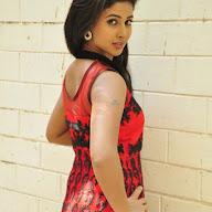 Pavani New Stills