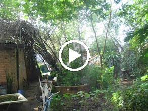 Video: 16/ SAM_0169 Hộ Giáp Ranh Nguyễn Văn Hạnh Khiêu Khích Ngày 31 05 2013 Và Việc Chùa Mới Xây Dựng Kiên Cố Đổi Mới Toàn Bộ Năm 2011 Đến Nay .AVI