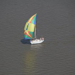 Dauphin Island Race 2013 067
