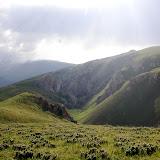 Biotope de Parnassius (Koramius) delphius albulus HONRATH, 1889,Tian Shan, Baybiche Tau, 18 km au Sud d'Uchkun (2350-2400 m), Kyrgyzistan, 23 juillet 2009. Photo : J. Ouvaroff