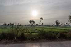 Beautiful landscape around the Nile.