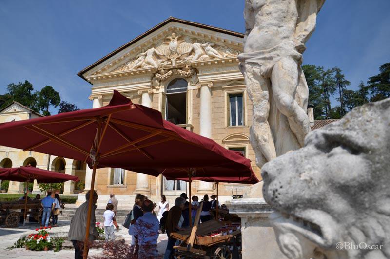 Villa Maser mostra ciliegie 13