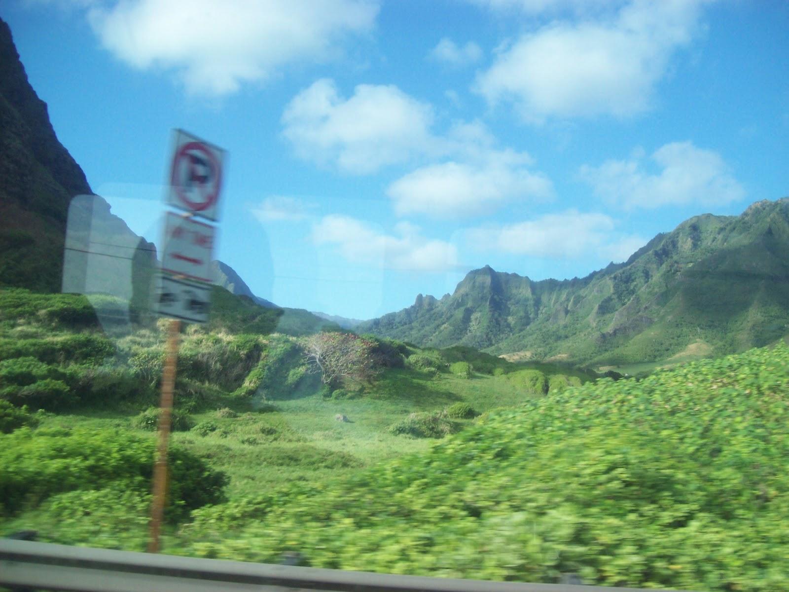 Hawaii Day 3 - 100_6891.JPG