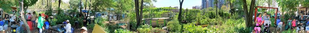 Populating the garden