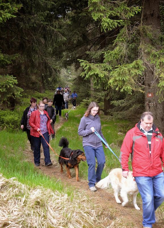2014-04-13 - Waldführung am kleinen Waldstein (von Uwe Look) - DSC_0433.JPG