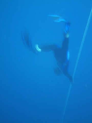 Judging by the fins, this is me