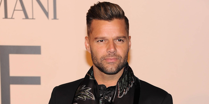 Ricky Martin Net Worth, Income, Salary, Earnings, Biography, How much money make?