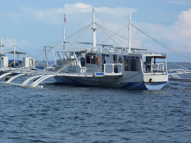 Dauin, Dumaguete, APO Island (Negros) - philippines%2Bdeux%2B624.JPG