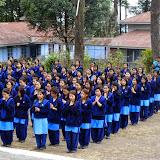VKV Tafrogam Utsarg Samaroh 2014-15 (11).JPG