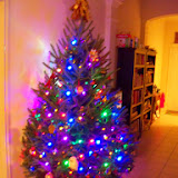 Christmastime - 116_6388.JPG