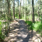 Boardwalk through Fairyland (346162)