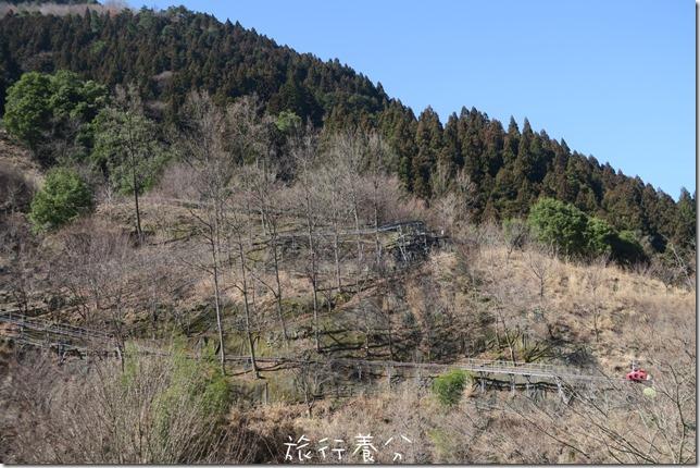 祖谷ふれあい公園(祖谷友誼公園) (3)