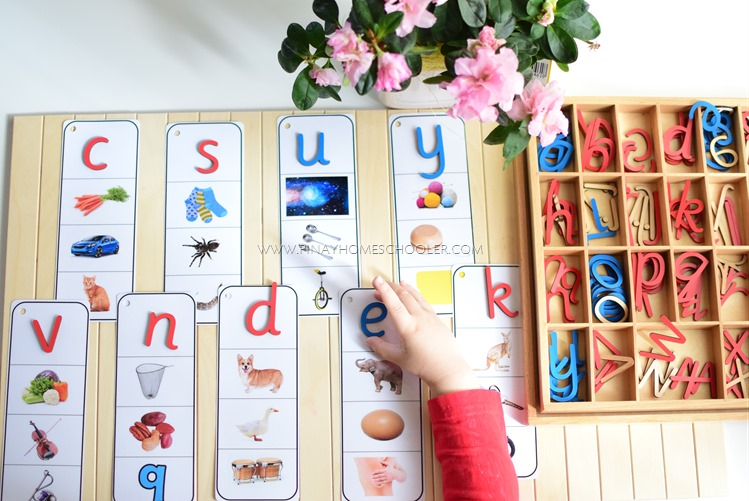Beginning Letter Phonics Cards