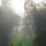 Après le lever du soleil. Les Carbets de Coralie (Crique Yaoni), 2 novembre 2012. Photo : J.-M. Gayman