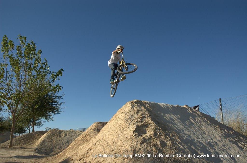 Ballena Dirt Jump BMX 2009 - BMX_09_0087.jpg