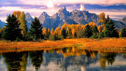 Morning Light, Grand Teton National Park, Wyoming.jpg