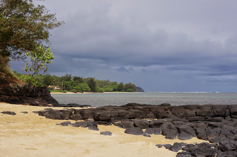 06-25-13 Annini Reef and Kauai North Shore - IMGP9317.JPG