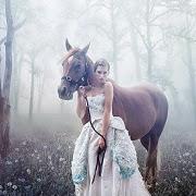 К чему снится коричневая лошадь?