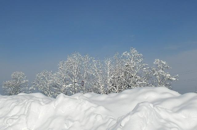 晴れ渡る冬空