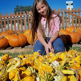 Pumpkin Patch 2014 - 116_4429.JPG
