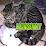 Lounge Katt's profile photo