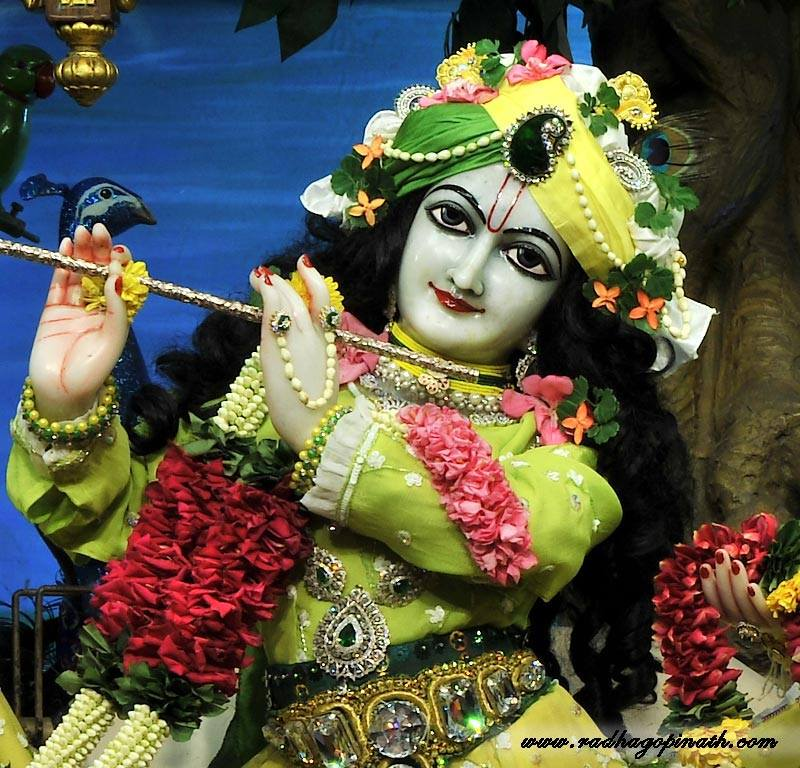 ISKCON Chowpatty Deity Darshan 12 Feb 2016 (2)