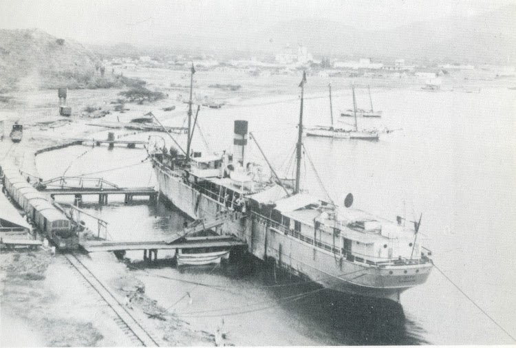 Vapor ALPES. Photo Hapag-Lloyd. Del libro Elder Dempster. Fleet History. 1852-1985.tif