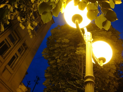 Улицы Заечара