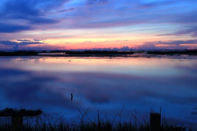 Озеро Тале Нои (Thale Noi, ทะเลน้อย)