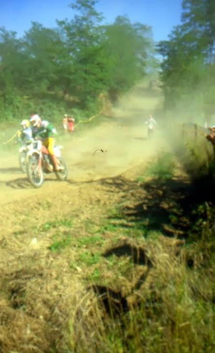 Sport - File003.jpg