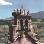 campanario1.jpg