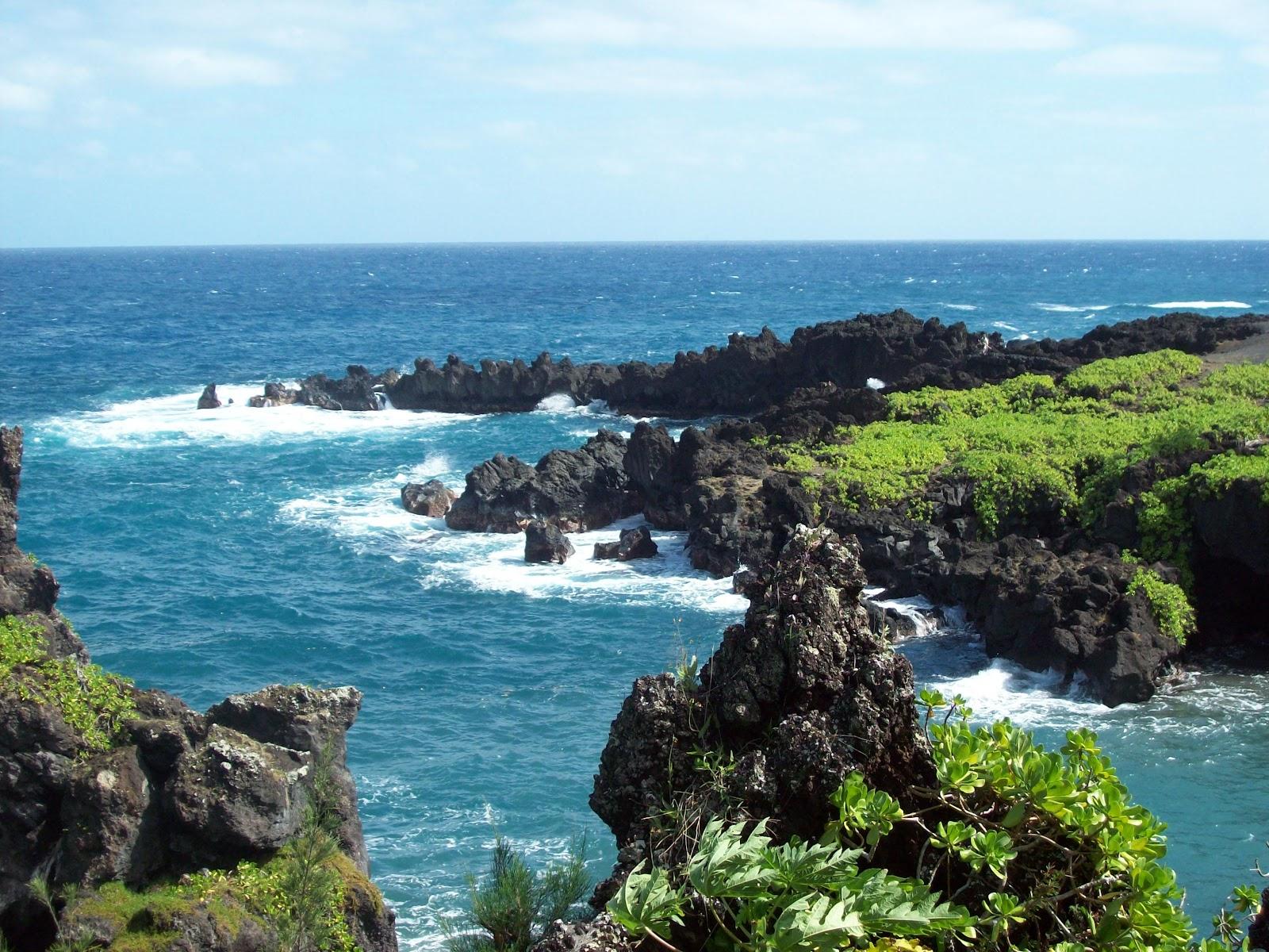 Hawaii Day 5 - 114_1558.JPG