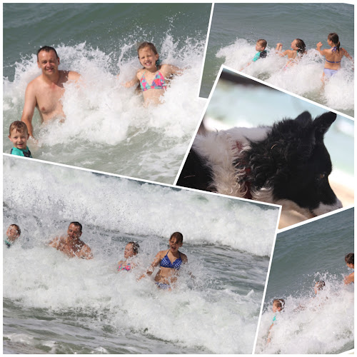 Fun in the waves while Lizzie watches