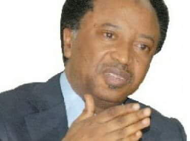 Every Nigerian Senator gets N13.5 monthly; about N200m as constituency fund – Shehu Sani