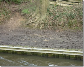 4 squishy towpath after M42