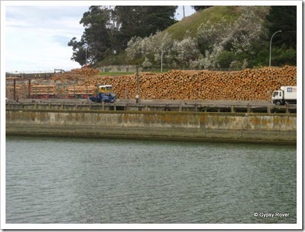 Look at all those logs waiting for export!