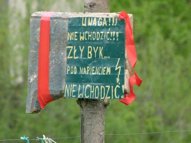 Grzywacka - P1190672.JPG