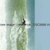 _DSC9686.thumb.jpg