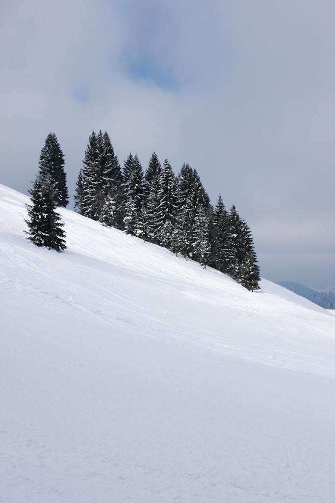 Ski - Vika-1816.jpg